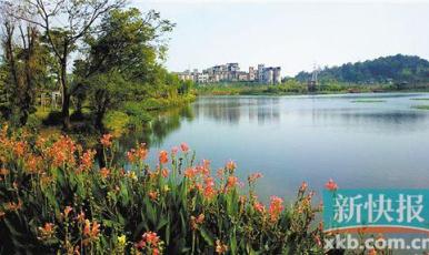 本月起 廣東所有湖泊都設