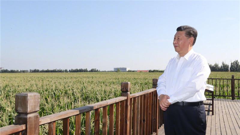 """习近平总书记关切事丨为黑土加""""油"""""""